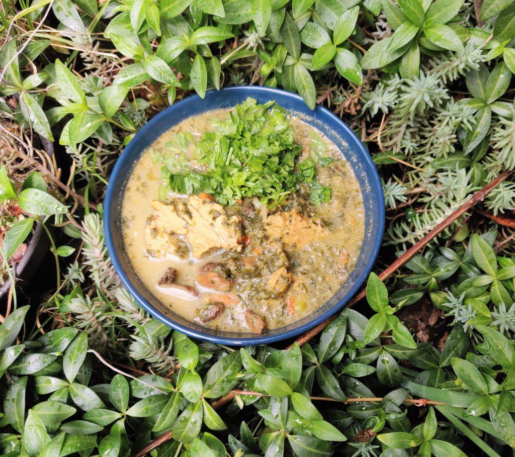 Zielona zupa w stylu azjatycki. Dobra jako wiosenny, dietetyczny obiad. Bezglutenowa